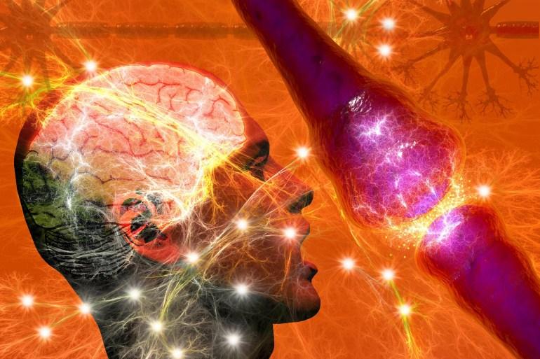 Symptoms of Epilepsy
