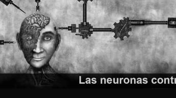 Las neuronas contra atacan