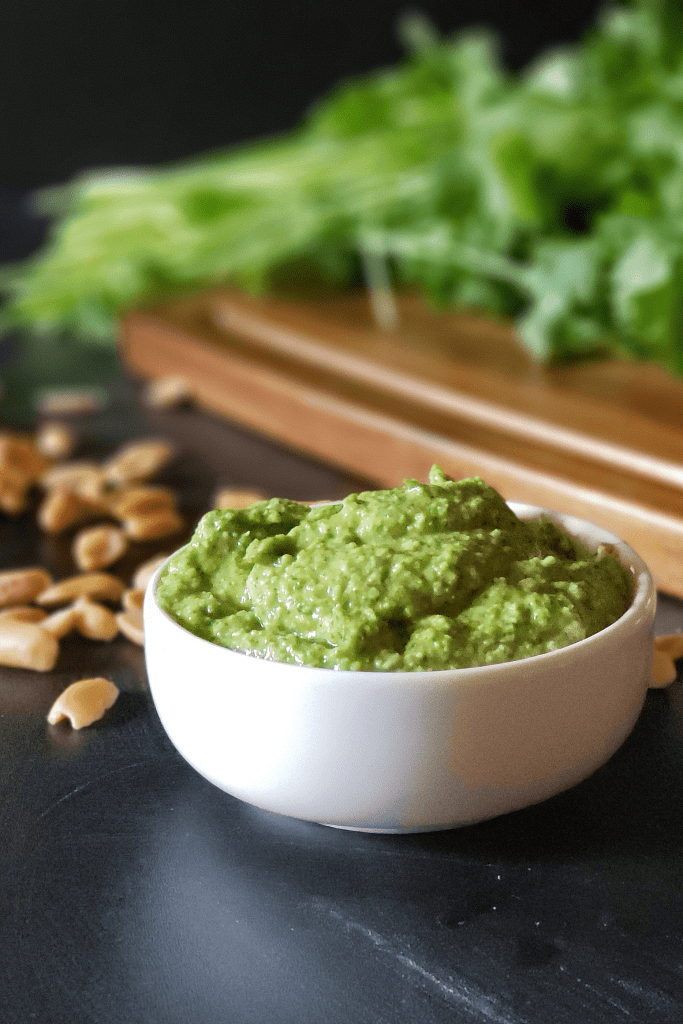 This Cilantro Pesto with Peanuts and Lime is packed with tons of robust flavor and lots of nutrients! Vegan and low-carb ingredients make this a versatile condiment that would be delicious on chicken, beef, or tofu.