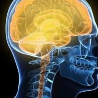 """فراموشی غیر اخلاقی: """"زمانیکه مغز برای حفظ خودانگاره مثبت، رفتارهای بد را فراموش می کند"""""""