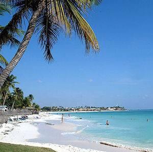 Aruba Eagle Beach 300 x 297