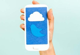 Conceptual phone showing a cloud and bird on blue background