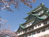 Neurosurgery Conference on CerebroVascular Disease in Nagoya Japan Feb 19th to 22rd Televised HERE Monday Night!