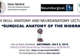 "NOW RECORDED from Cameroon AFrica….""Neuroanatomy Series"", today with 'Surgical Anatomy of the Midbrain"""