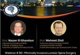 "Friday 2 pm Cairo time, ""Minimally Invasive Lumbar Spine Surgery: Neurosurgery/Orthopedic Collaboration"""