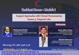 """RECORDED, LIVE…August 25, 2021………from Pakistan, """"Clinical Neuroanatomy with Surgical Approaches – TEMPORAL LOBE"""", 8:15 AM IST"""