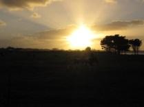 Sonnenuntergang in Westport