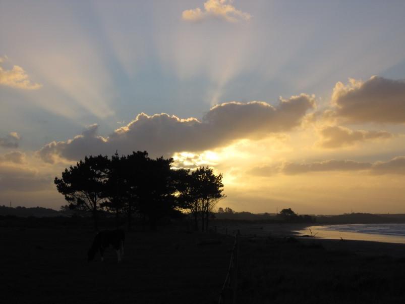 Sonnenuntergang in Westport II