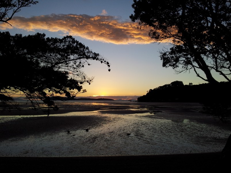 Shelly Beach - Coromandel