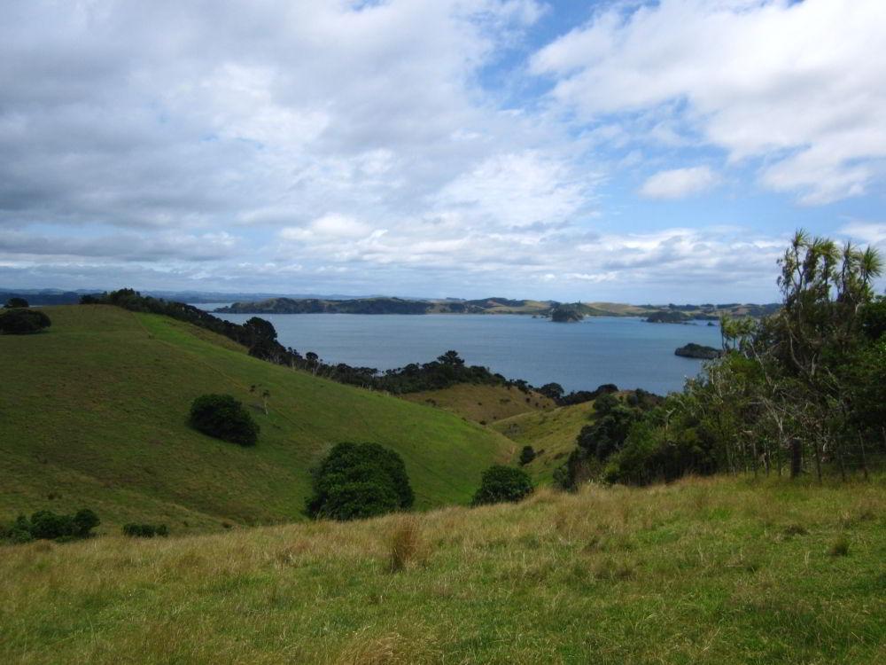 Grüne Hügel und viel Wasser, Bay of Island