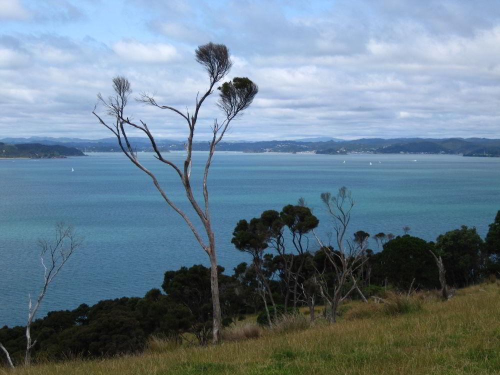 Azurblaues Wasser in der Bay of Island