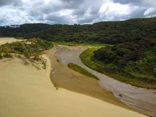 Sand, Fluss und grüne Natur