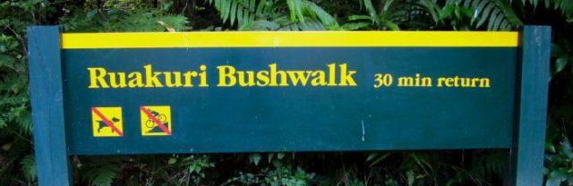 Ruakuri Bushwalk