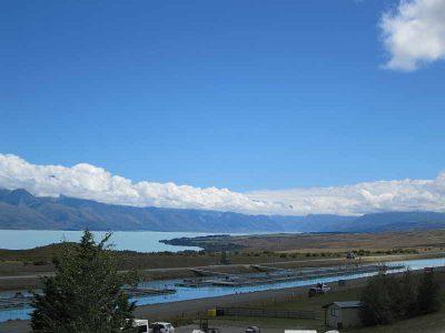 Mt. Cook Salmon Farm - leckeren Lachs
