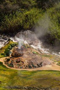 heißer Wasserdampf schießt aus der Erde - Waimangu Volcanic Valley