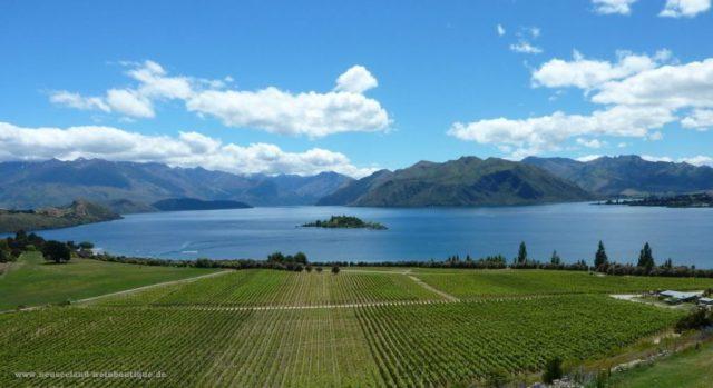 Weingut Rippon am Lake Wanaka