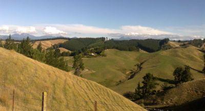 Die schöne unberührte Natur von Neuseeland