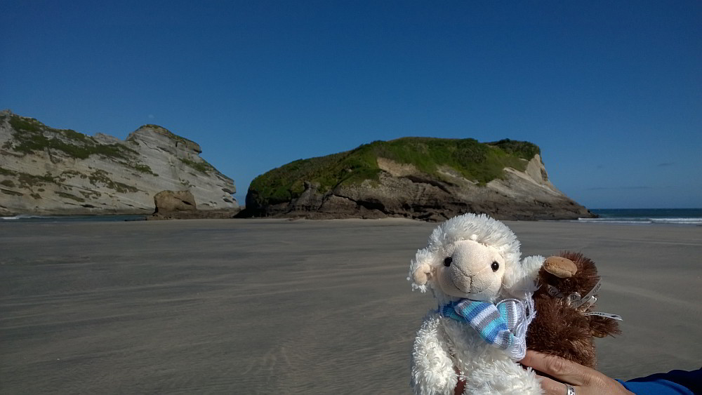 Schaf und Kiwi auf der Wharariki Beach