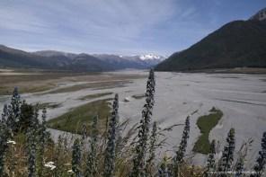 Blick auf das mit Kies gefüllt Tal des Waimakariri River