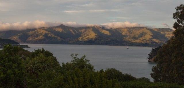Ausblick auf die Banks Peninsula von Akaroa aus