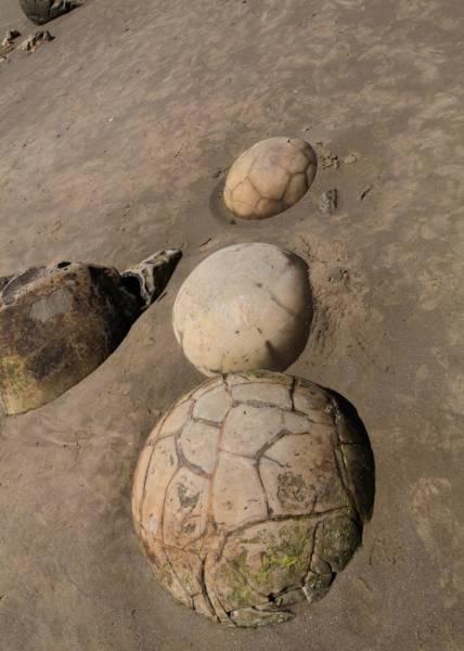 Verschiedene Formen und Größen der Moeraki Boulders