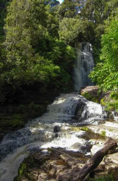 McLean Falls in den Catlins von Neuseeland