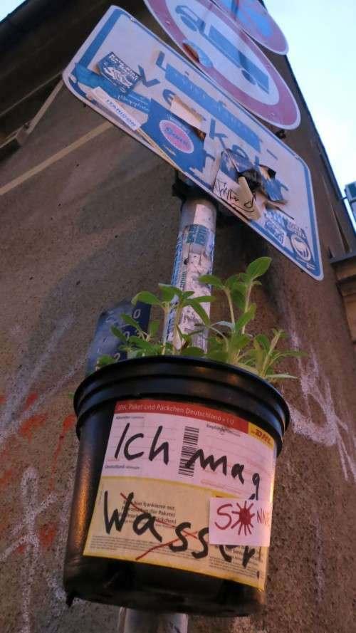 Gesehen auf der Böhmischen Straße