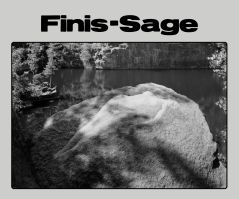 Nymphen-Finissage