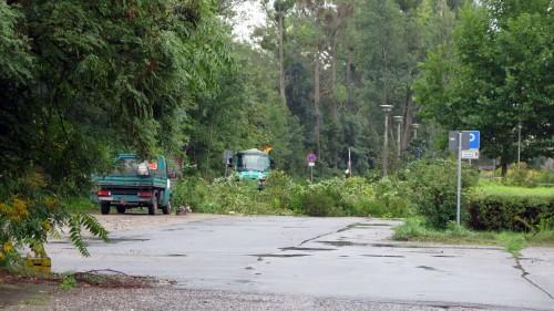 Auch rund um die wilden Parkplatzflächen wird geräumt und gesäubert.