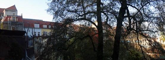 Hinterhof im November 2012