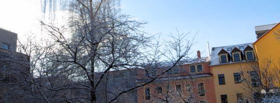 Hinterhof im Februar 2013