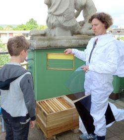 Bienen im Romain Rolland Gymnasium Imkerin Uta Tomczak erklärt den Aufbau des Bienenhauses.