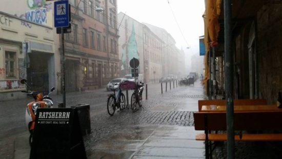 Neustadt-Regen: Der eine oder andere Tropfen fand gestern den Boden in der Neustadt. Foto: Gehilfe Oph
