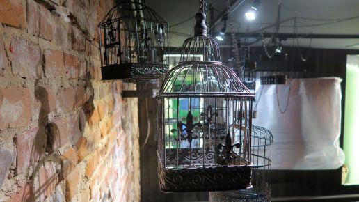 Vogelkäfige als Gestaltungselement