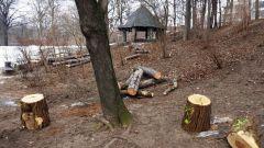 freier Blick auf die Hütte an den Tischtennis-Platten