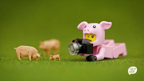 Lego kann auch einen politischen Kontext haben.