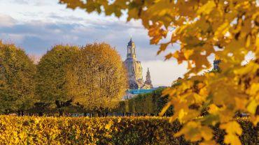 Dresden Goldener Herbst - Foto: stock.adobe.com © Torsten Lohse