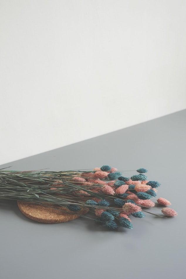 Loiça de Cozinha em Cortiça