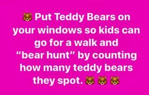 bear hunt post