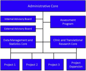 Fig. 3. Structure of the Center for Neurodegeneration and Translational Neuroscience (CNTN). Three cores—administrative, data management and statistics, and clinical and translational research—serve the three projects. The assessment program reiteratively assesses all aspects of the enterprise. The internal and external advisory boards review the center semi-annually and report to the Administrative Core and to the National Institute of General Medical Sciences (NIGMS).