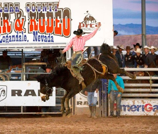 Come To Logandale Nevada 57 Miles From Las Vegas For The Annual Clark County Fair Rodeothe Event Features Carnival Rodeo Competitions