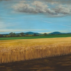 Mysterious Cornfield Appears Overnight Destroying Part of the M9 Near Mount Leinster // Oil on canvas // 53x73cm // 2016
