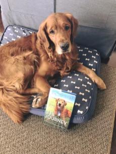 Bean sharing JJ's Journey book