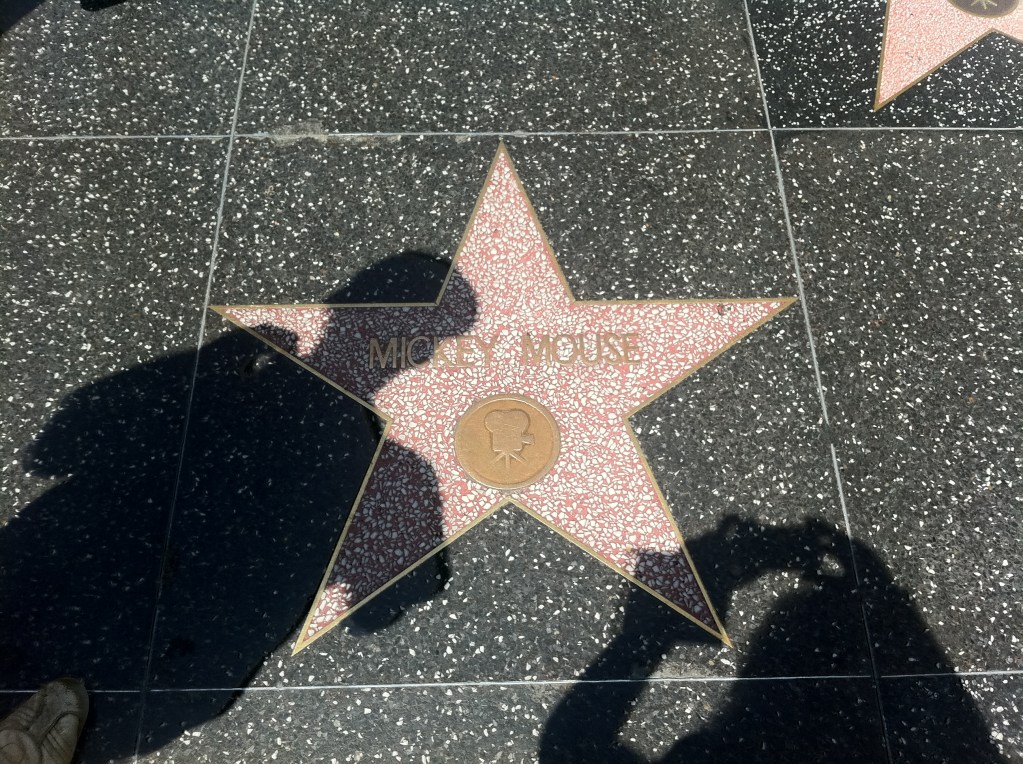 Never Ending Honeymoon | The Mickey Mouse Star in Hollywood