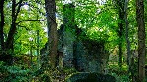Never Ending Honeymoon | Peak District Mills. Photo: Richard Moore