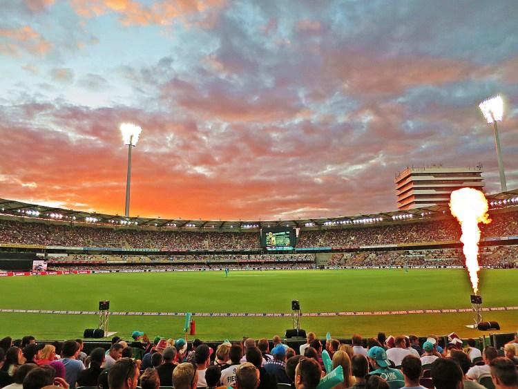 IMG_6007 Cricket