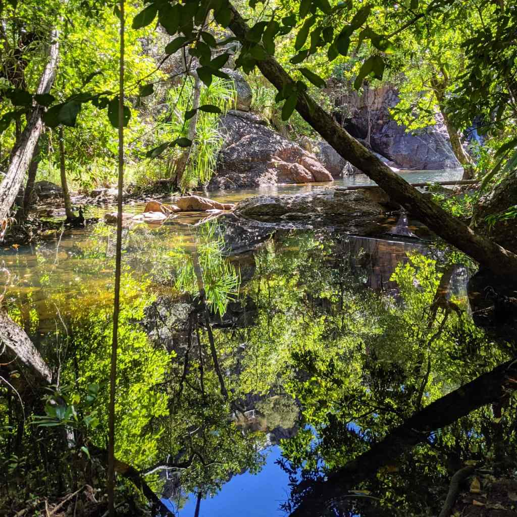 A secret billabong and swimming hole surrounded by trees in Kakadu National Park