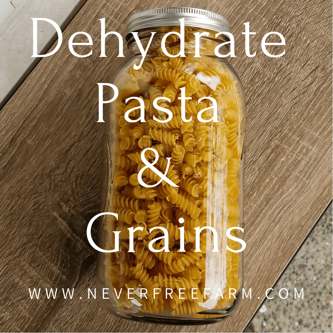 Dehydrating Pasta and Grains