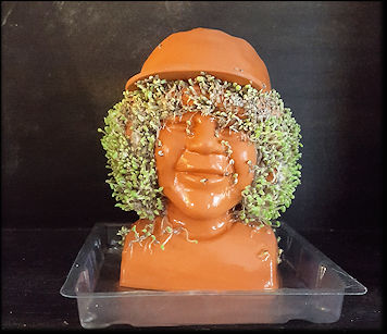 Dustin Chia Pet Stranger Things
