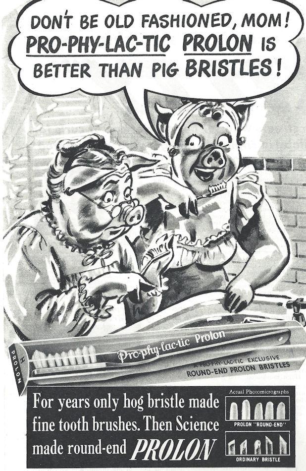 Prolon toothbrush ad, better than hog bristle?